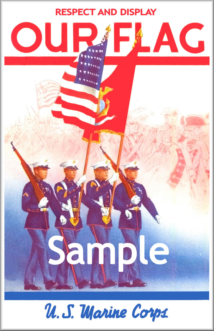 the issue of flag desecreation in the united states Constitutional amendendment issue on thursday may 25th, 1995, a proposed constitutional amendment that would make it illegal to burn the american flag passed its first test the congress and the states shall have power to prohibit the physical desecration of the flag of the united states.